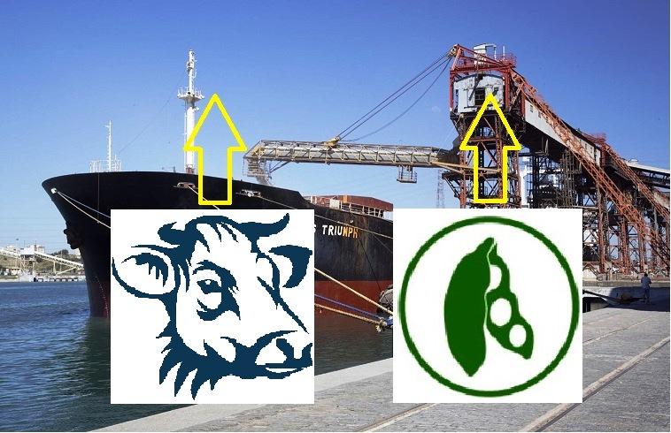 Exportaciones de carne y soja con alzas en valor y volumen durante primer semestre